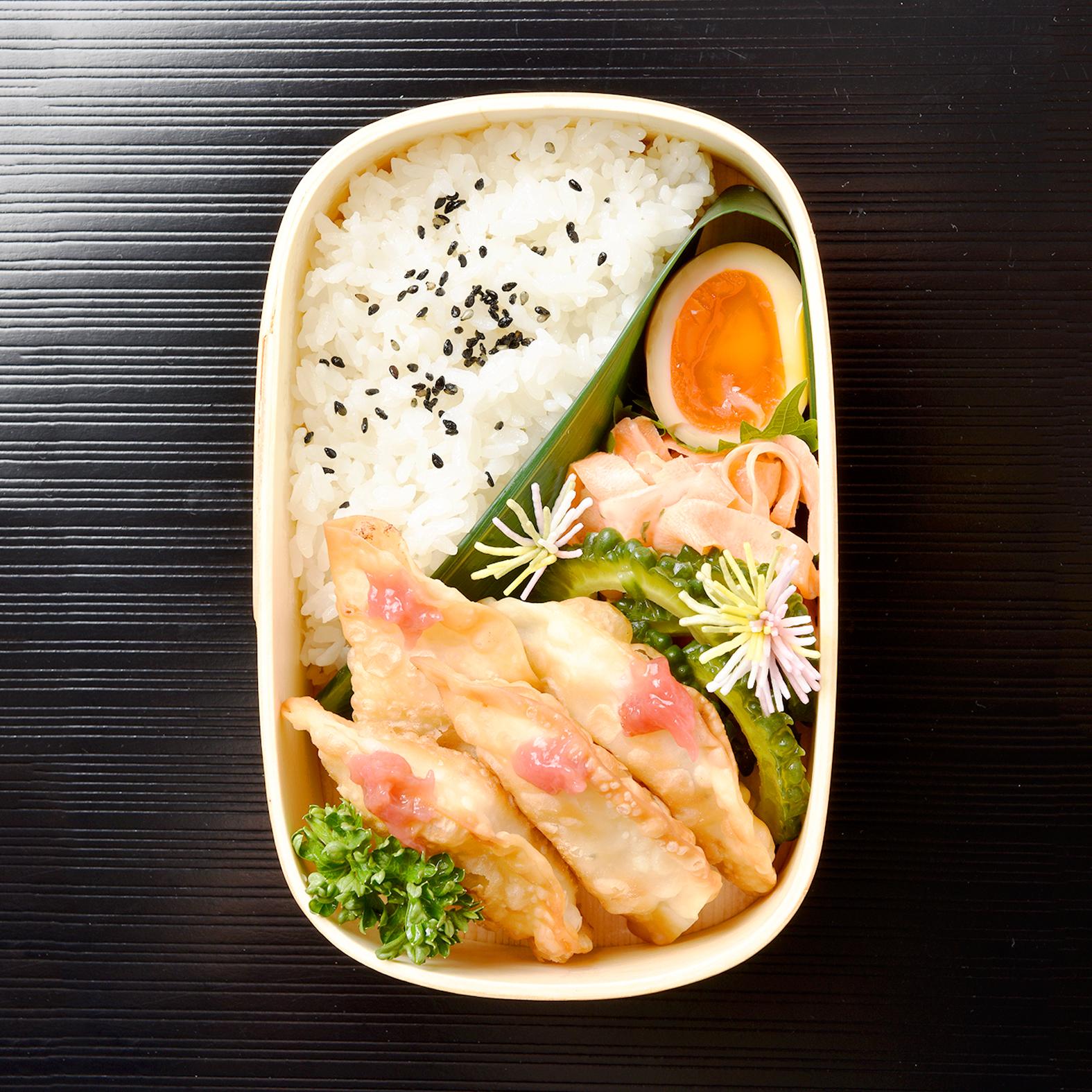 Chicken With Tauan Gyoza Bento